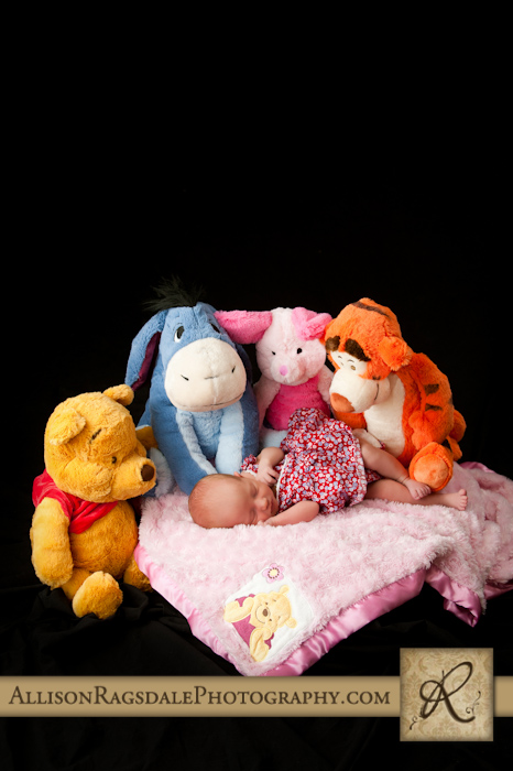 Winnie the Pooh and Friends Baby Picture