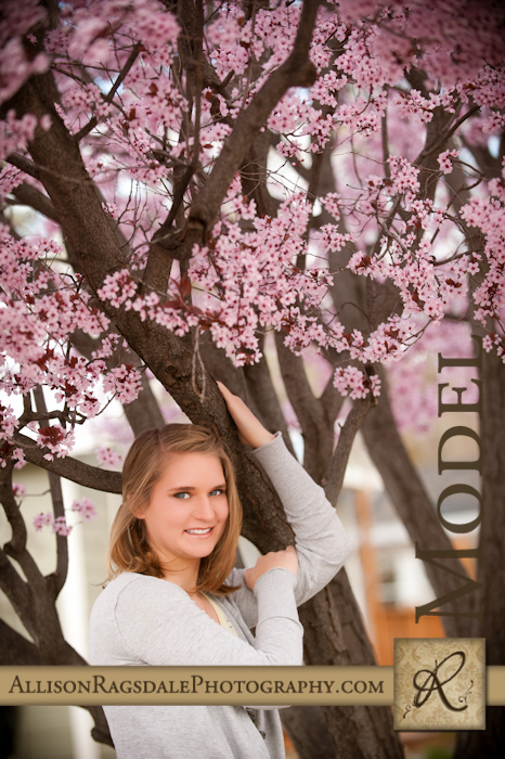 Crab Apple Tree Blossoms Durango Senior Picture