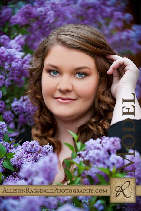 senior picture in purple lilacs