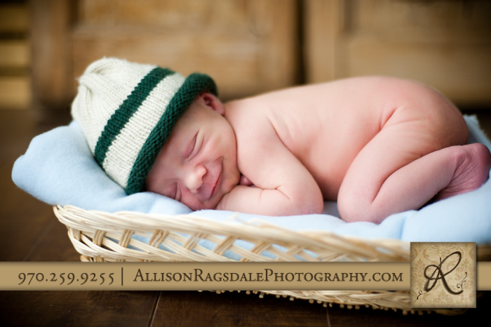 newborn in a basket picture