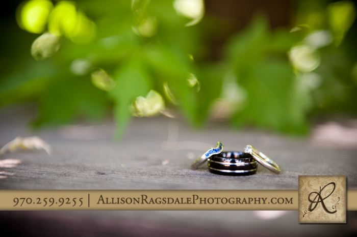 bride and groom's wedding rings photo