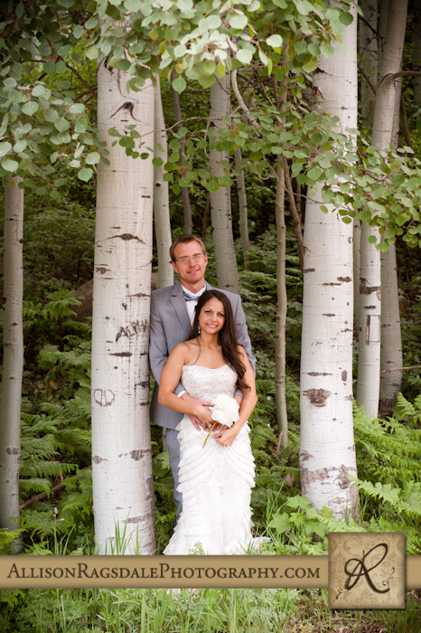 newlyweds in aspen grove pic