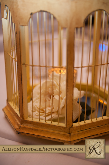 birdcage certerpeices at wedding reception