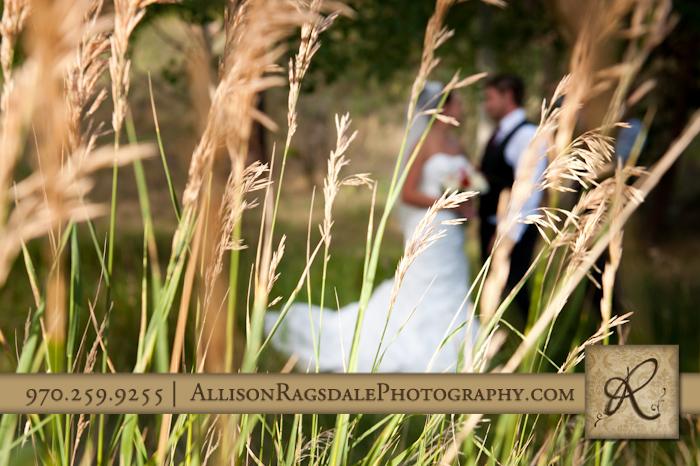 bride and groom in grass durango wedding glacier club