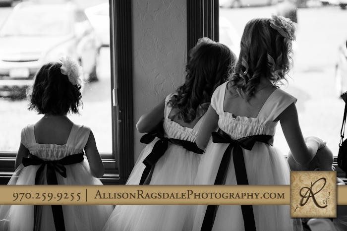 flower girls looking for bride wedding in silverton co