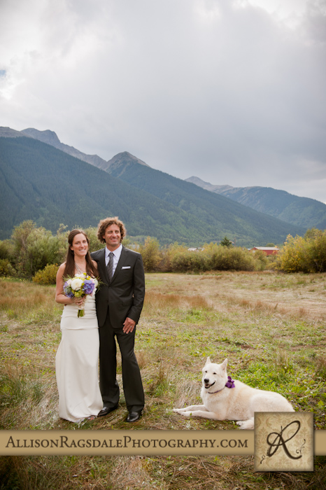 bride and groom and dog ring bearer photo in silverton wedding