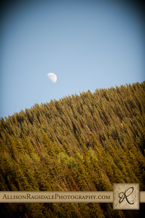 half moon above silverton kendall mountain wedding reception