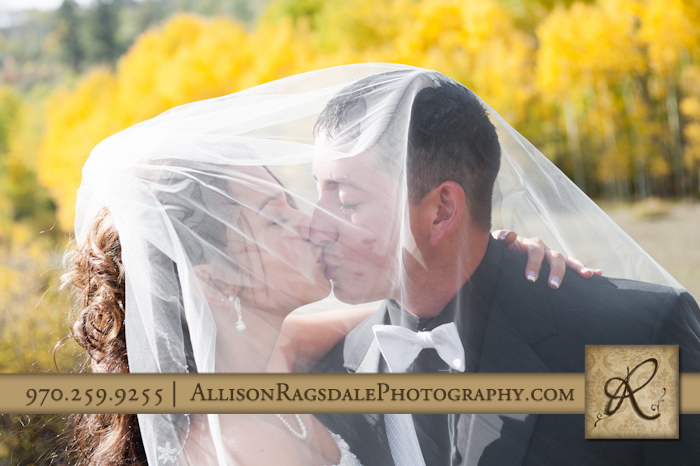 bride and groom kissing under veil picture