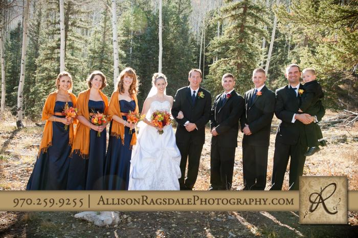 wedding party portrait boyce meadow durango colorado