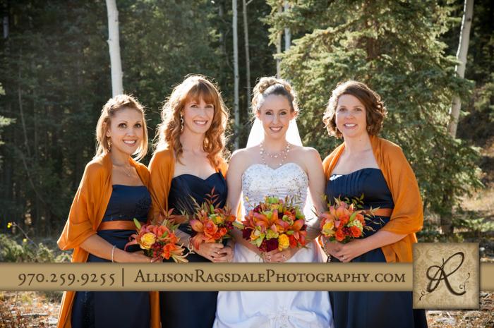 bridal party portrait boyce meadow durango wedding