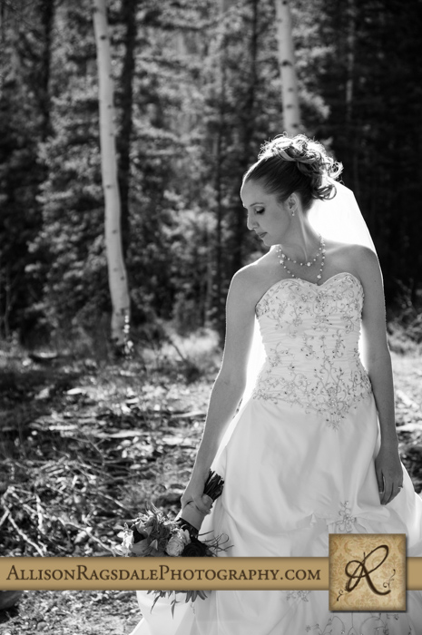 bride and her bouquet picture boyce meadow durango