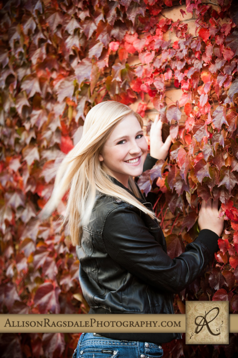 Red fall leaves senior picture