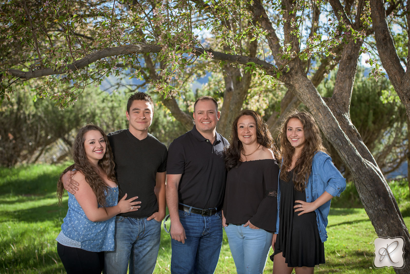 Durango Colorado family pictures - trees