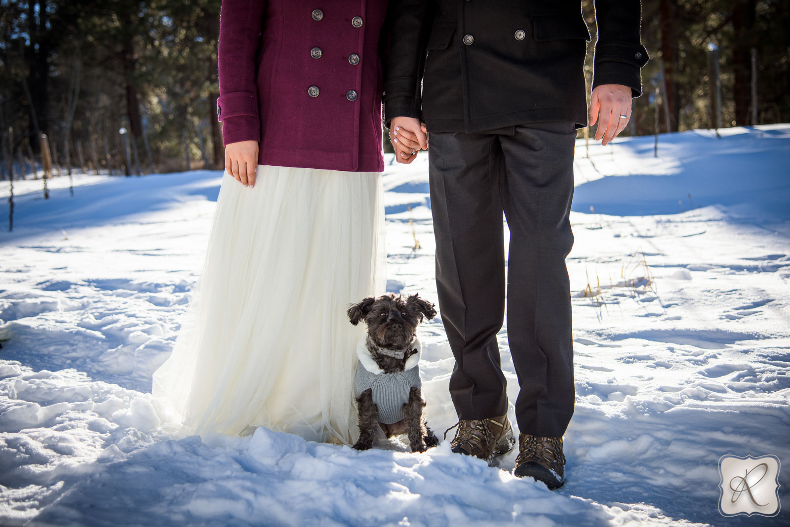 Wedding Portraits with Dog