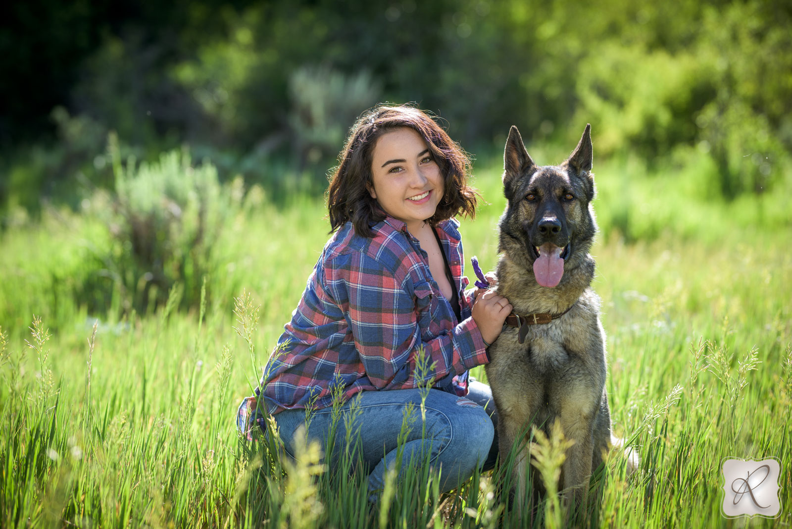 dog senior pictures in Durango, Colorado