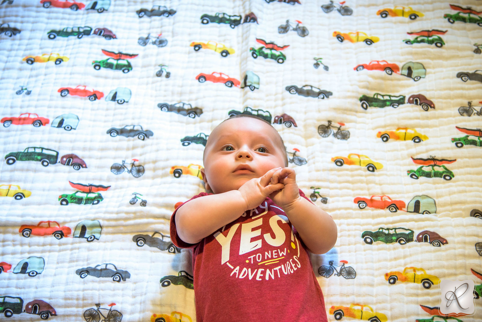 baby portraits in Durango Colorado