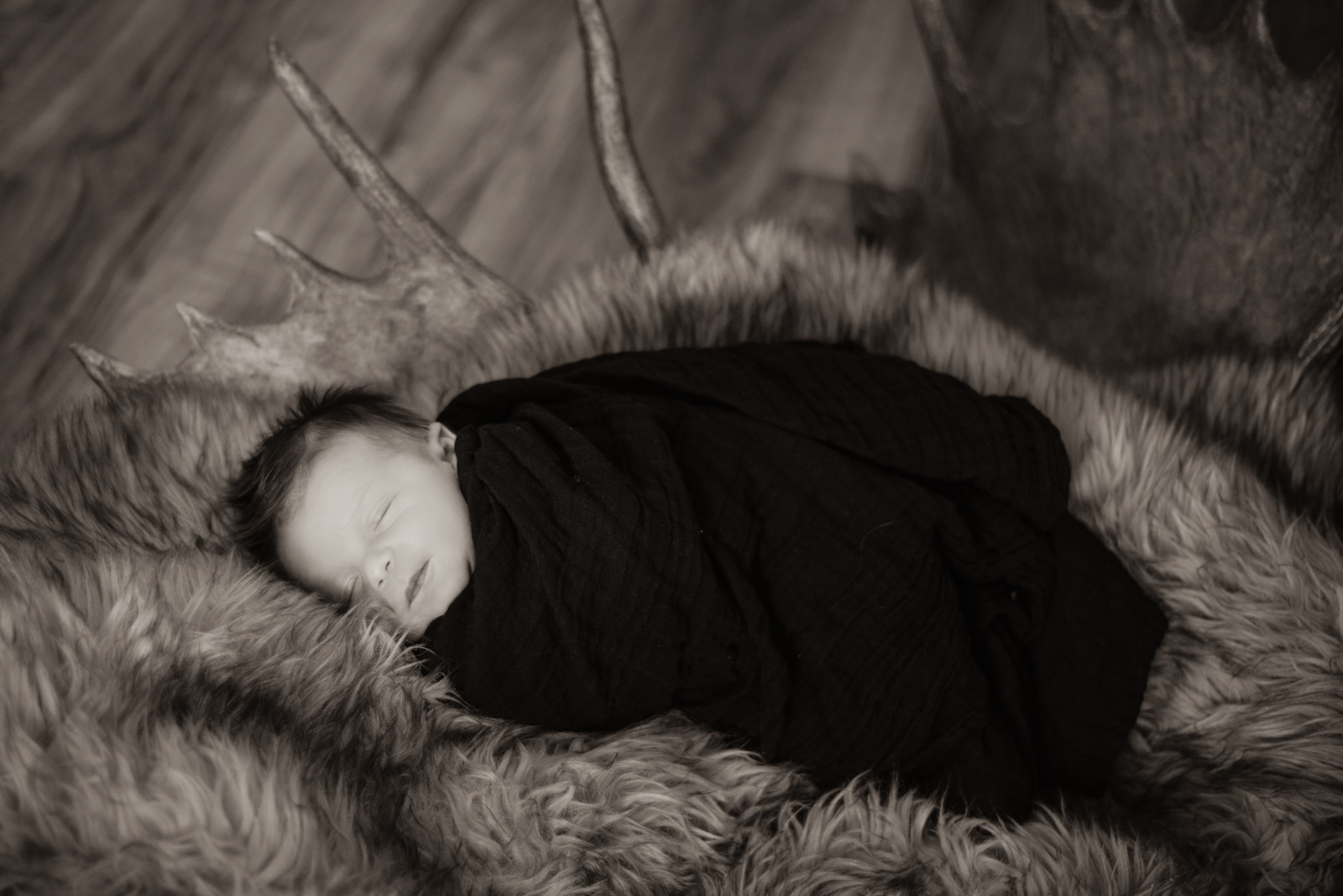 Baby Breck's Portraits in Durango Colorado