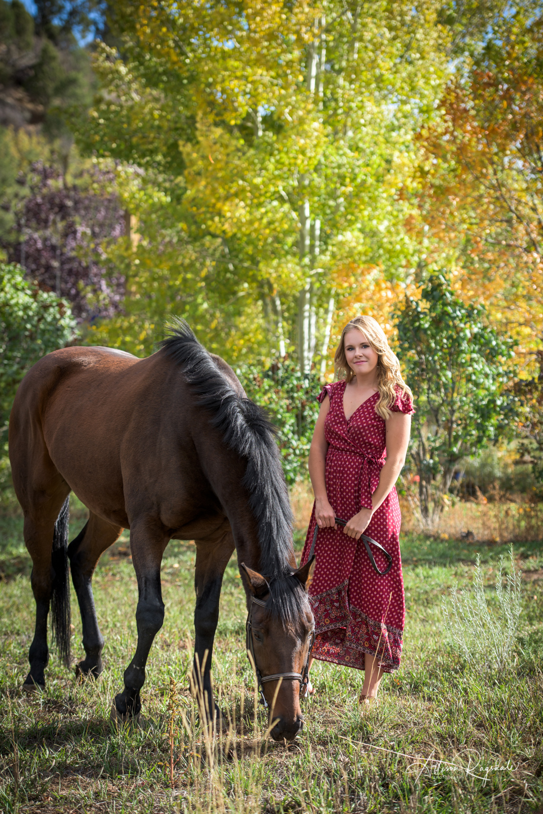 Senior pictures with horses outdoor professional portraits