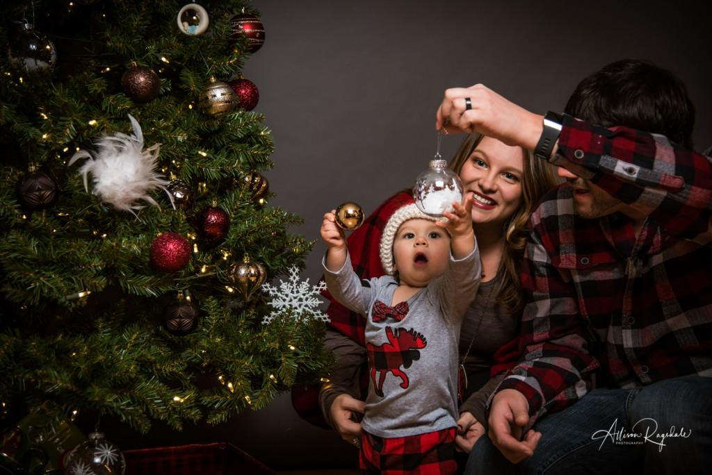 adorable christmas family portraits