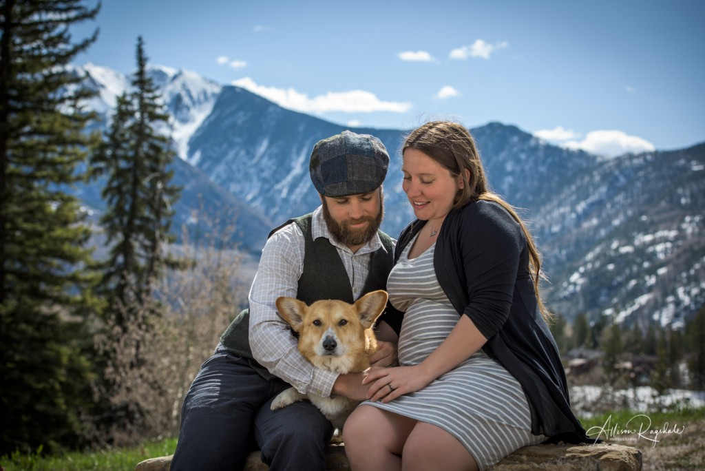Maternity pictures with dog, The Ryan Family