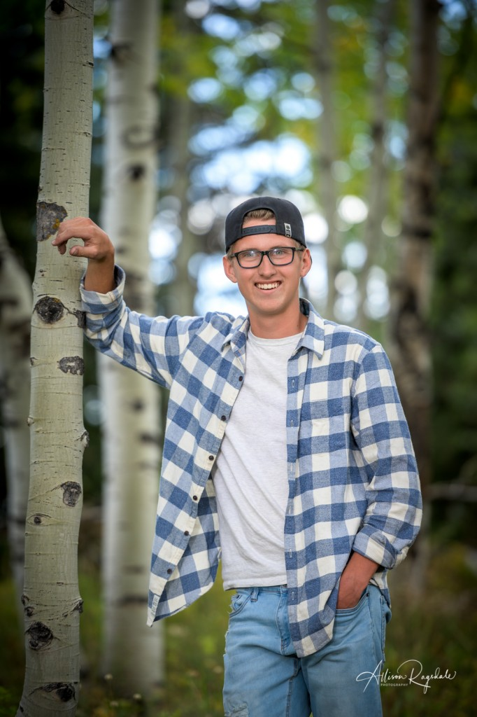 Senior pics with aspen trees