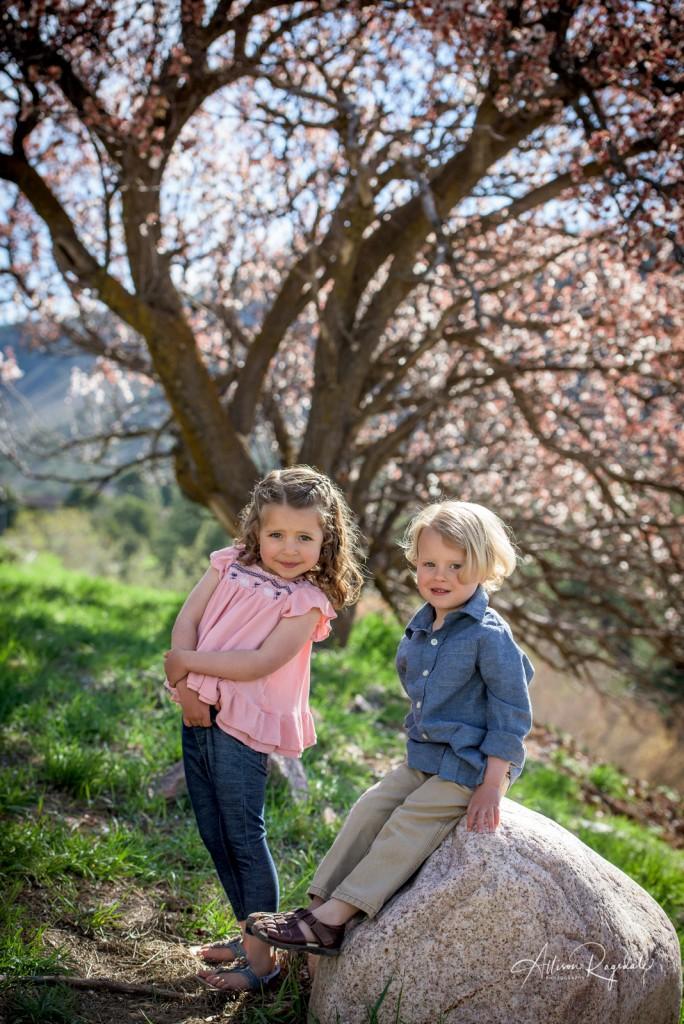 Cute kid photos in trees