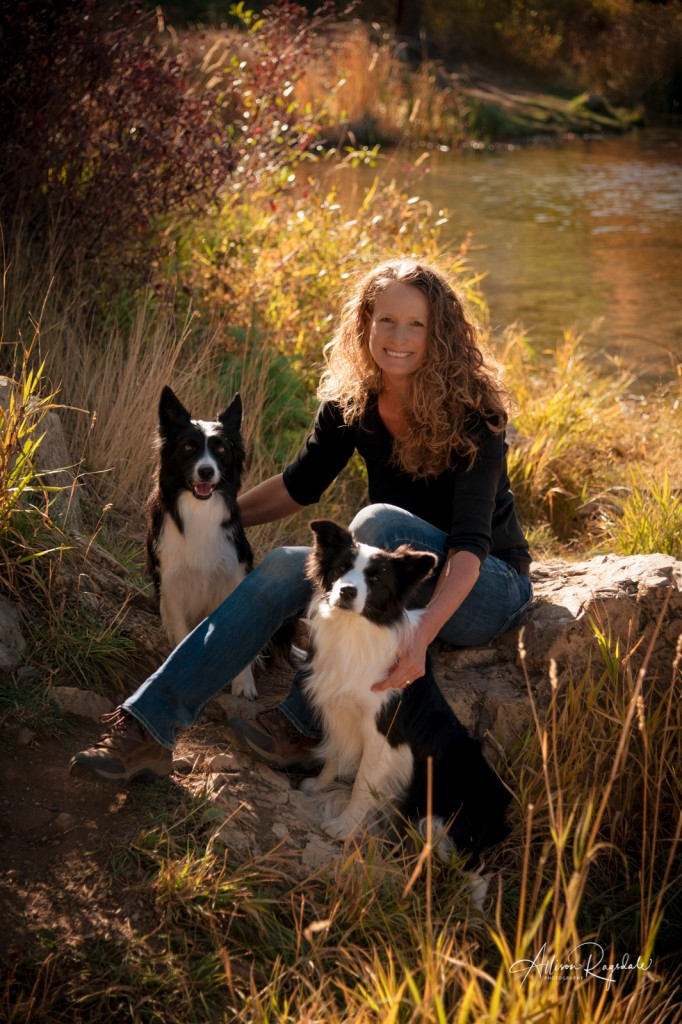 Senior pictures with border collies