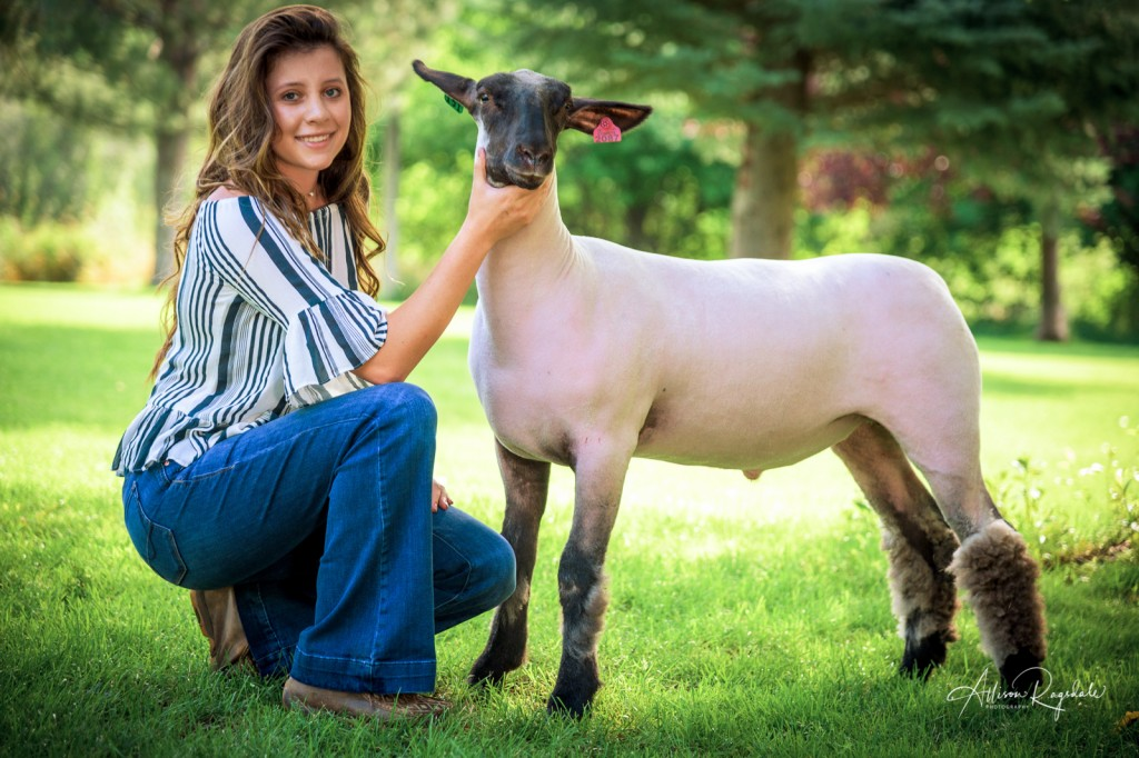 Senior pictures with sheep