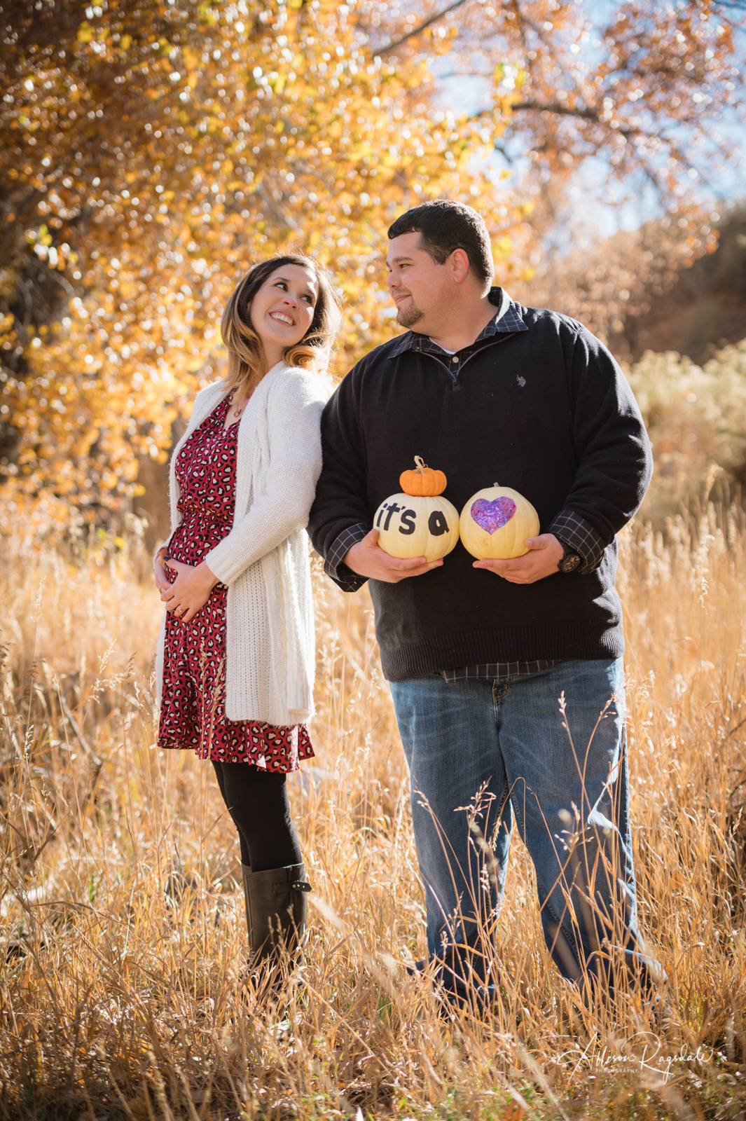 Pregnancy announcement photography