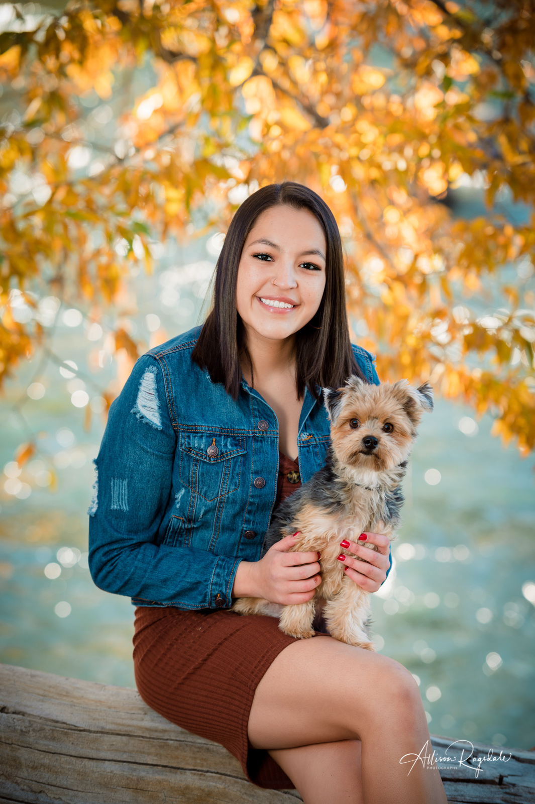 Fall senior pictures with little dogs