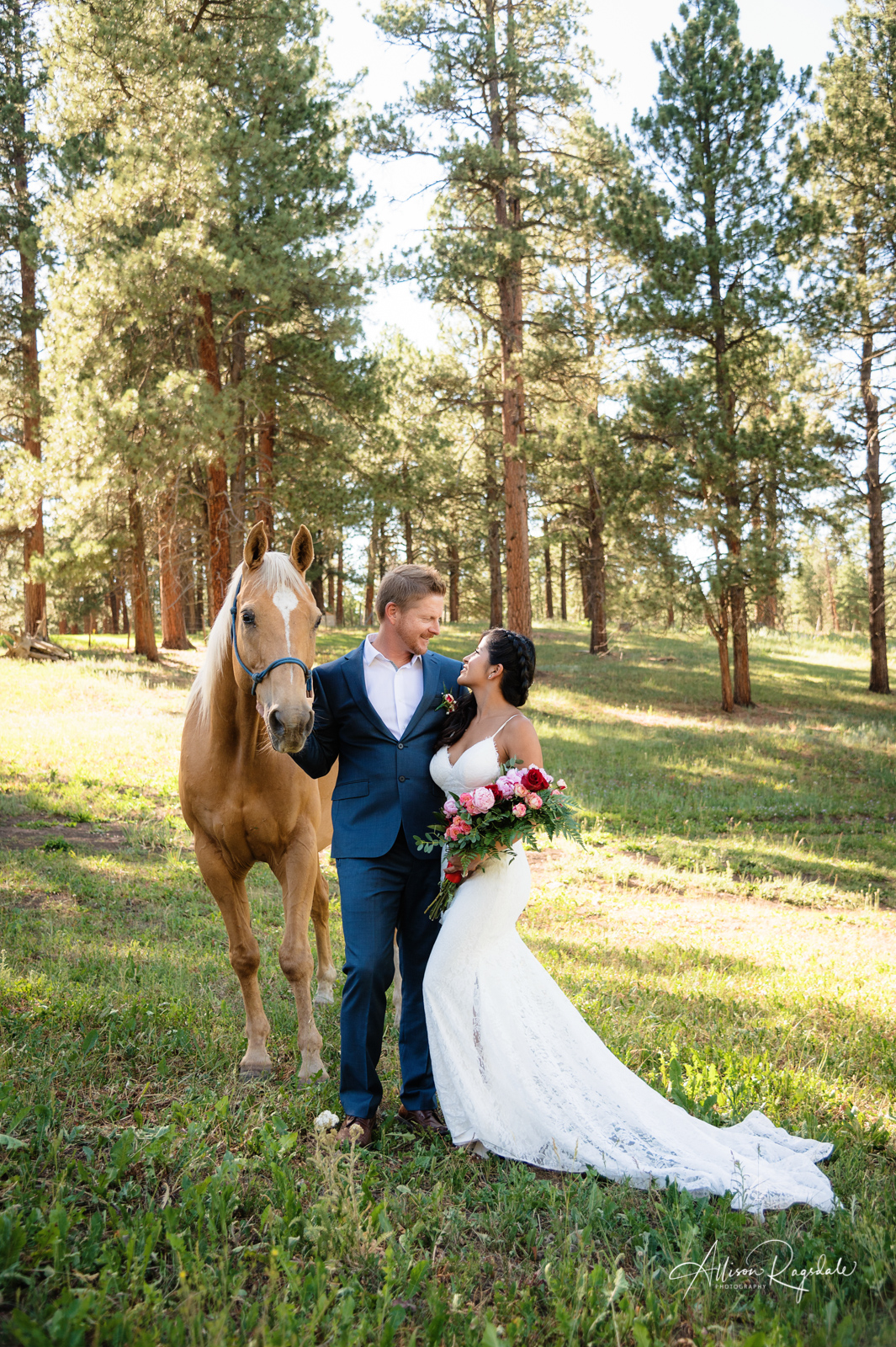 Colorado wedding pictures with forest