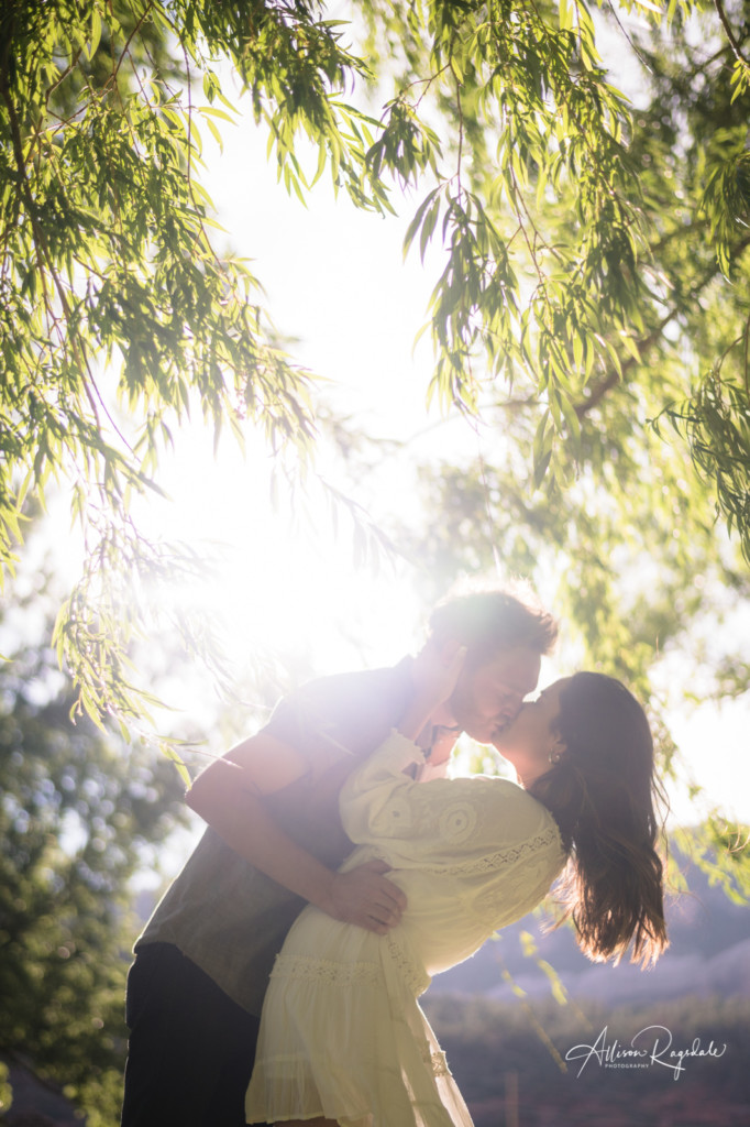 sunflare willow tree engagement picture