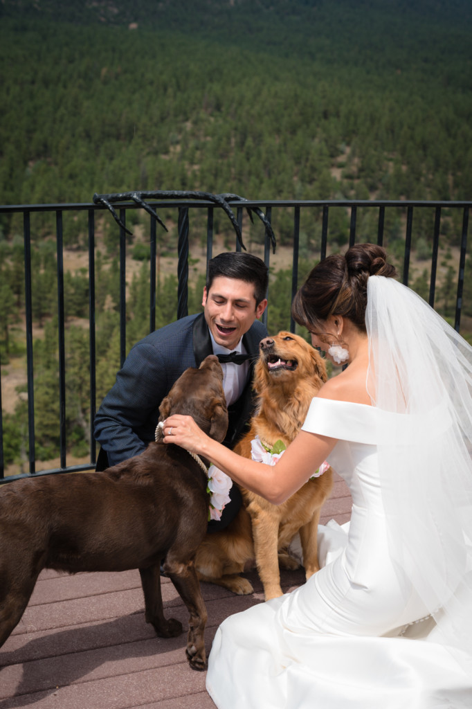 bride and groom with dogs wedding photo keyah grande