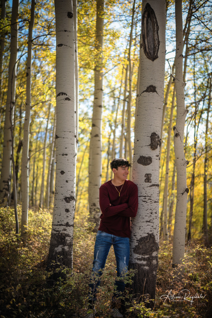fall color aspen tree forest senior guy portrait
