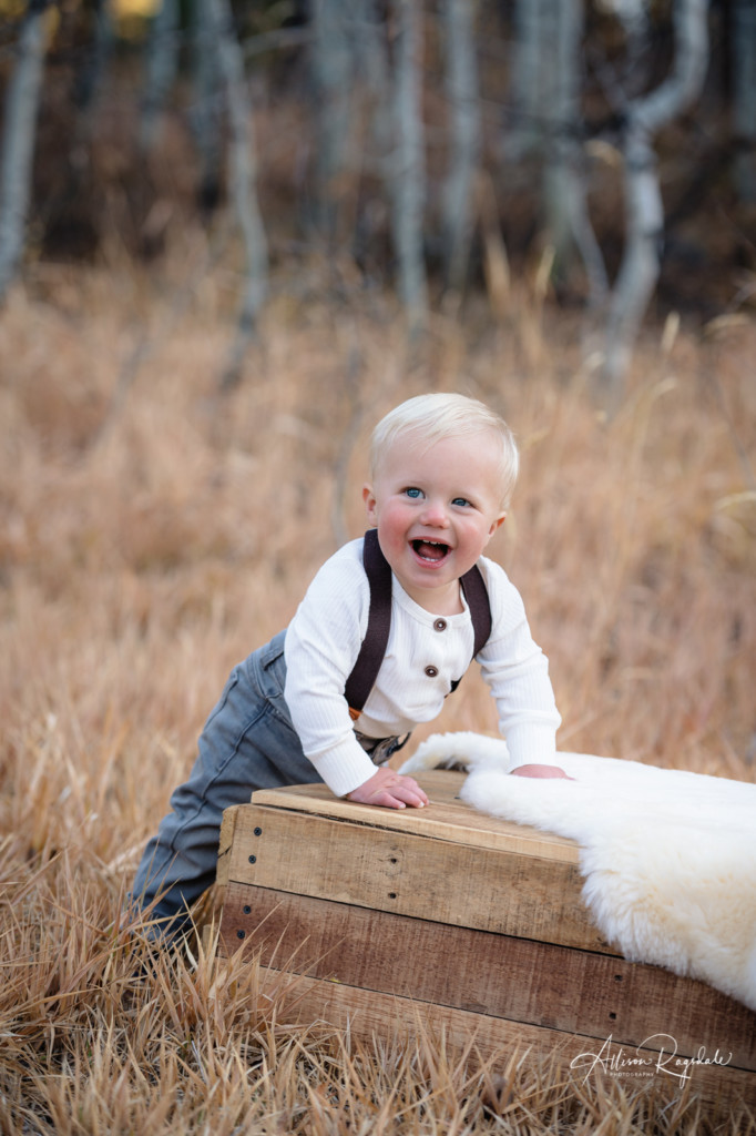 little boy with bear rug and apple box in long grass fall portrait
