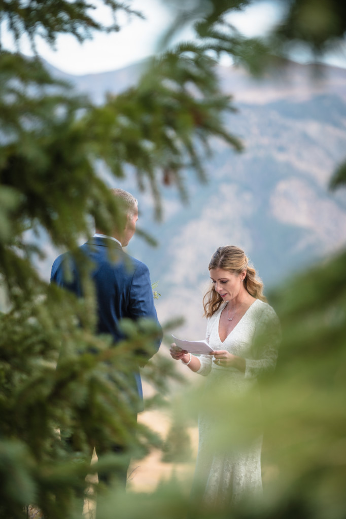 elopement ceremony through pine tree branches picture