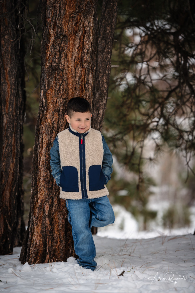 little boy leaning against pine tree photo