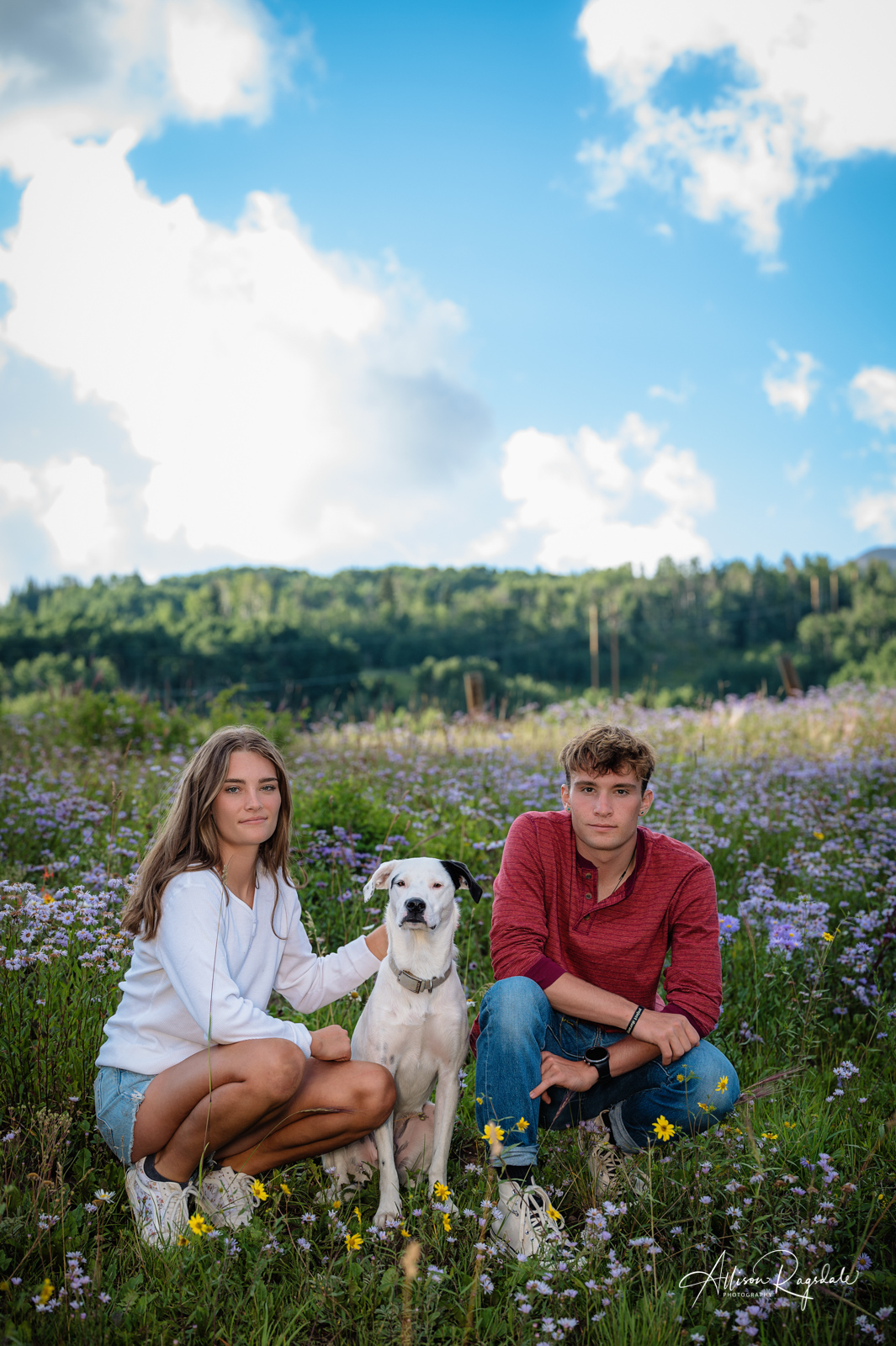 sibling picture with dog serious faces in wildflowers